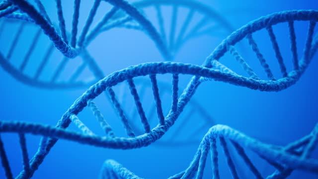 ADN - Vidéo