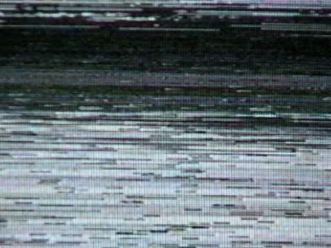 tv  noise  #1 - offline bildbanksvideor och videomaterial från bakom kulisserna