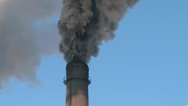 дым (smoke - уголь стоковые видео и кадры b-roll