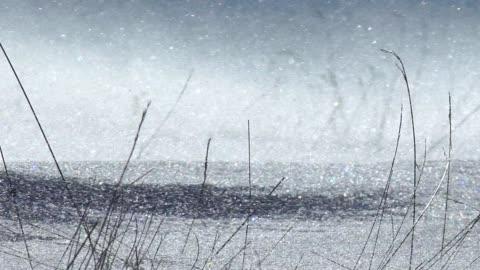 vidéos et rushes de drifting la neige - froid