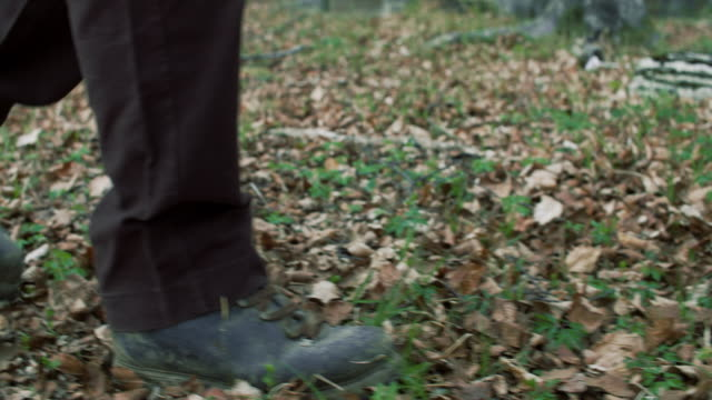 KALK IN THE WOOD video