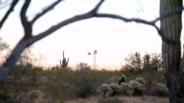 ファームの風車 - オコティロサボテン点の映像素材/bロール