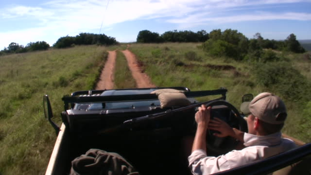 1080i Game Drive South Africa video