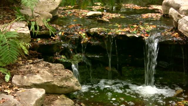 hd - 1080 i поток через скалы с листьями, 4 - ручей стоковые видео и кадры b-roll