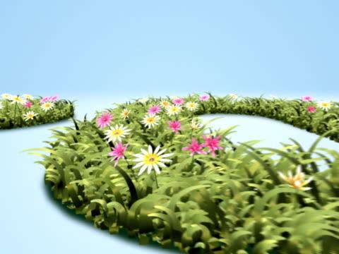 2012_FlowerBloom video