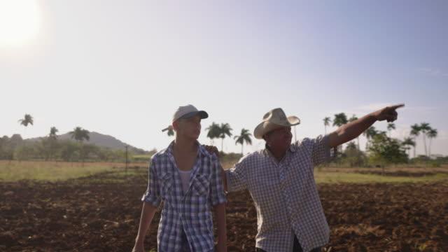 27 agriculteur et fils à pied dans le champ Tête de série Cultivations discuter de l'organisation - Vidéo