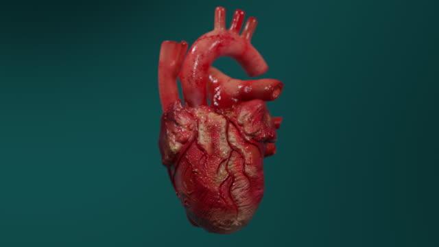 vídeos de stock e filmes b-roll de 3d animation of a human heart beating - seio coronário