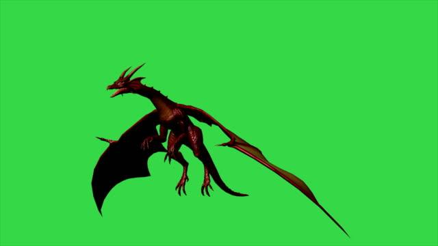 animacja 3d smoka w locie - oddzielona na zielonym ekranie - smok postać fikcyjna filmów i materiałów b-roll