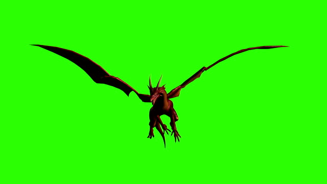 3d animation of dragon in fly - separated on green screen - dinosaur stock videos and b-roll footage