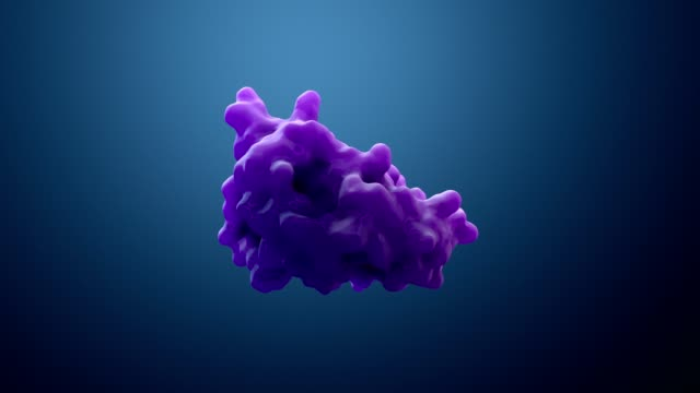 3d illustration protein or enzyme 3d illustration protein or enzyme protein stock videos & royalty-free footage