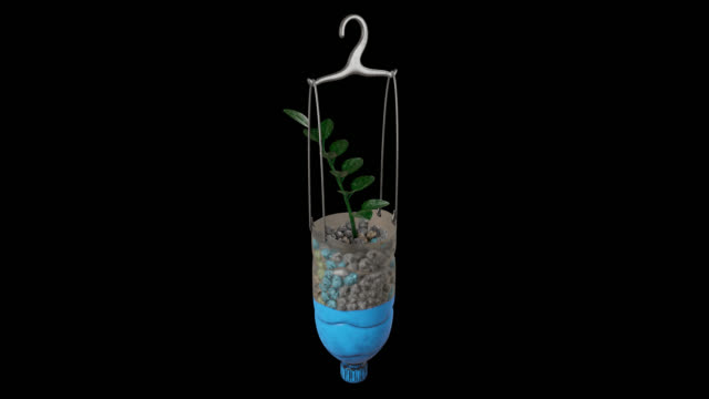 3d rendering motion graphic looping of reuse plastic bottles hanging plants, isolated on black background with alpha channel section in the end.