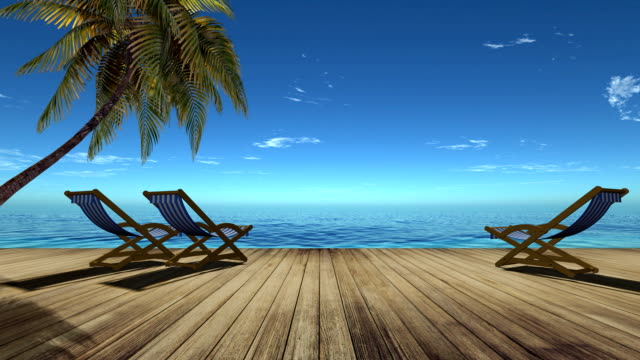 3d,Tropical beach landscape with palm tree and chairs 3d,Tropical beach landscape with palm tree and chairs tourist resort stock videos & royalty-free footage