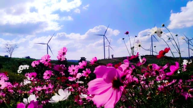 4k, 4 k auflösung: windkraftanlage, windenergie, blumenwiese - elektrischer generator stock-videos und b-roll-filmmaterial