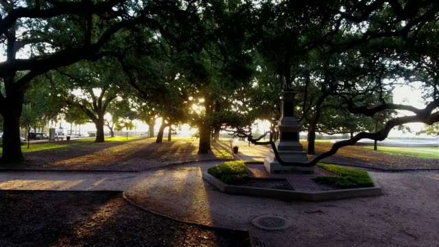 4k Aerial of Battery Park In Charleston South Carolina at Sunrise video