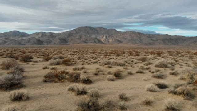 vídeos de stock e filmes b-roll de 4k aerial video - desert death valley - stabilized shot