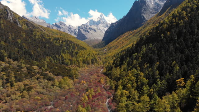 4k Aerial view and dolly forward of Valley in autumn season at Yading Nature Reserve, China. 4k Aerial view and dolly forward of Valley in autumn season at Yading Nature Reserve, China. snowcapped mountain stock videos & royalty-free footage