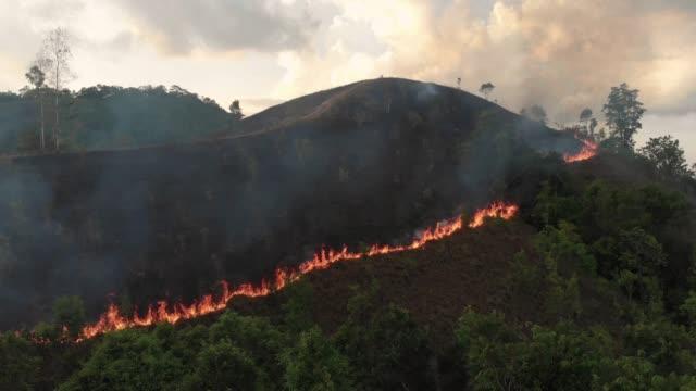 stockvideo's en b-roll-footage met 4 k luchtfoto en lockdown van forest fire op zonsondergang tijd. - luchtvervuiling