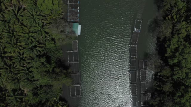 4k aerial view and zoom in of fish farming. video