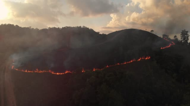 vídeos de stock e filmes b-roll de 4k aerial view and zoom in of forest fire in sunset time. - fogo posto