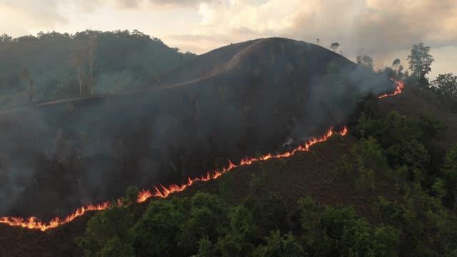 vidéos et rushes de 4 vue aérienne de k et zoom hors forêt feu au coucher du soleil. - desastre natural