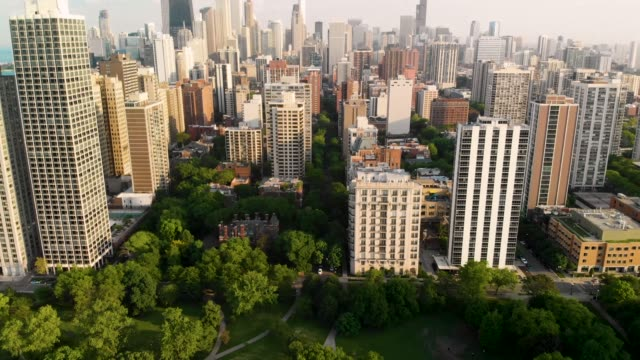 4k Chicago Skyline Drone Video From Lincoln Park - Tilt Up 4k Chicago Skyline Drone Video From Lincoln Park - Tilt Up Shot from Park to City and over. chicago stock videos & royalty-free footage