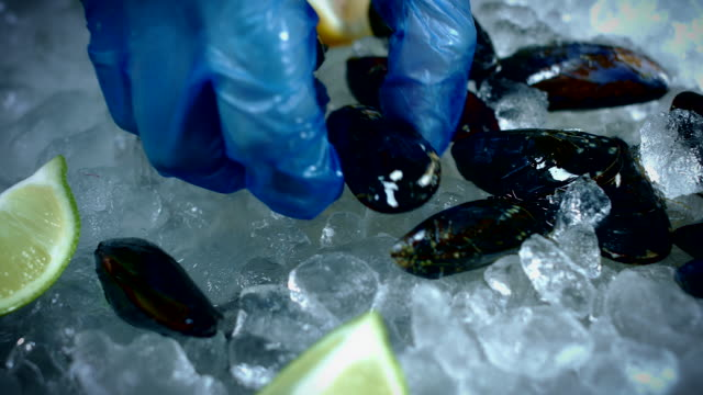 4k Fish and Seafood on Ice, Dolly of Black Mussels video