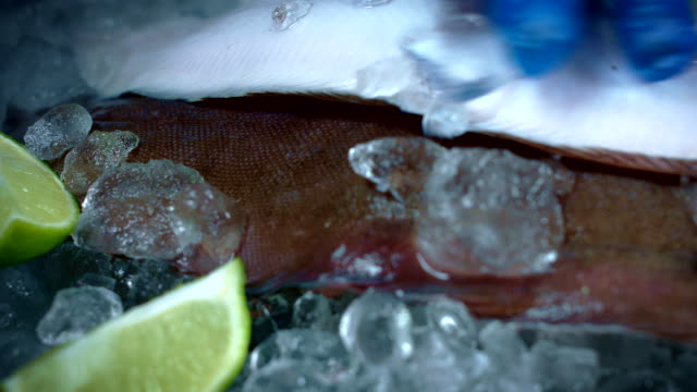 4k Fish and Seafood on Ice, Dolly of Black Sole video
