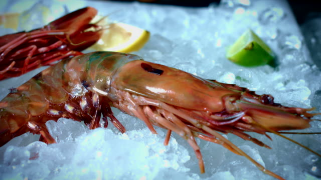4k Fish and Seafood on Ice, Dolly of Gambas video