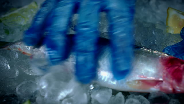 4k Fish and Seafood on Ice, Dolly of Herring video