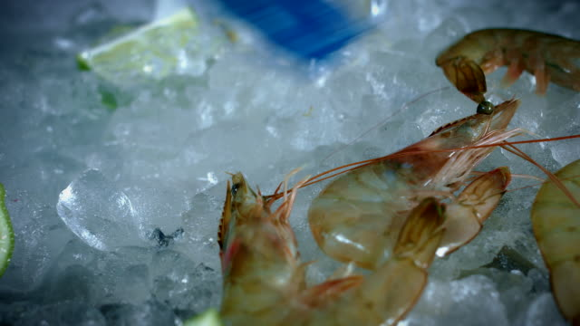 4k Fish and Seafood on Ice, Dolly of Prawns video