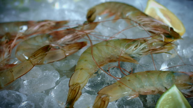 4k Fish and Seafood on Ice, Dolly of Shrimps video