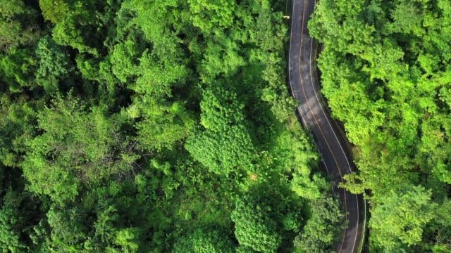 vidéos et rushes de 4k images du point de vue aérien ou drone de la route locale dans la forêt. concept de transport et de voyage. - haut