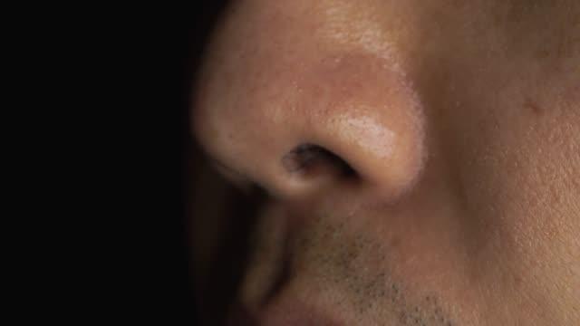 asya burun 4 k görüntüleri - burun vücut parçaları stok videoları ve detay görüntü çekimi