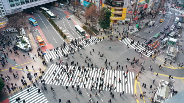 stockvideo's en b-roll-footage met 4k footage scène van voetgangers en auto menigte ongedefinieerde mensen lopen viaduct de straat kruising cross-walk in shibuya district tokyo stad, japan. japans cultuur-en winkelgebied concept - japan