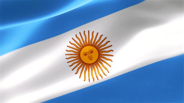 4k Highly Detailed Emblem of Argentina video