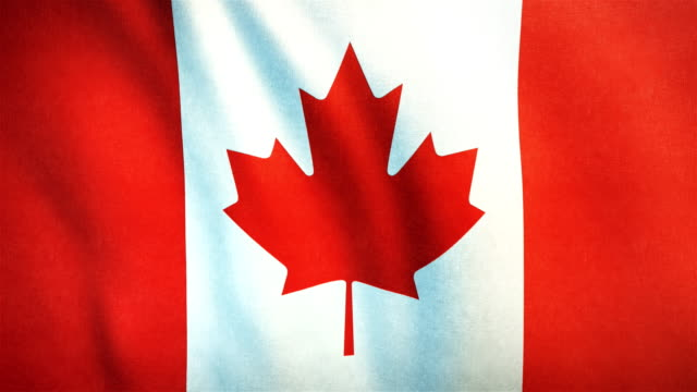 4k highly detailed flag of canada - loopable - canada day stock videos & royalty-free footage