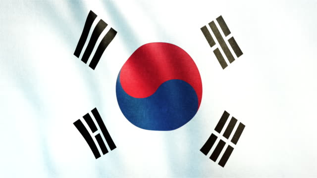4k highly detailed flag of south korea - loopable - bandiera nazionale video stock e b–roll