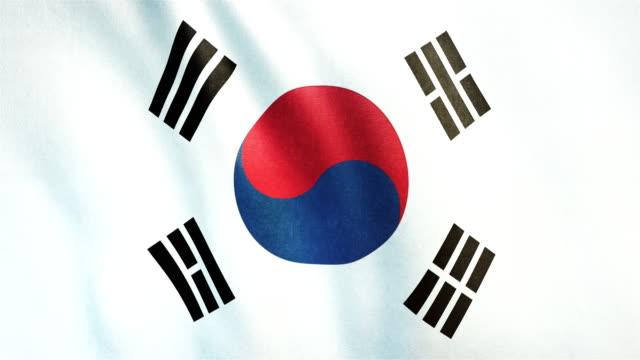 4 k güney kore - loopable son derece detaylı bayrağı - güney kore stok videoları ve detay görüntü çekimi