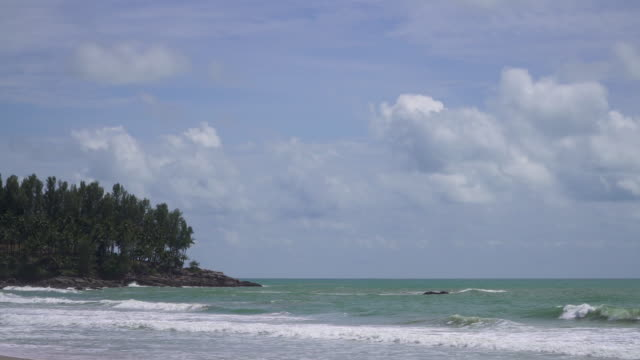 4k of Sea beach and tropical forest with blue sky. video
