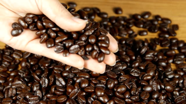 4k of Woman hands holding coffee beans - Inside close up of woman hands holding coffee beans on the table video