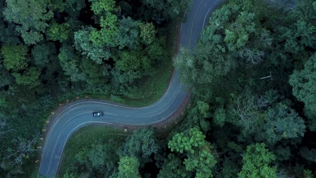 4 k 解像度森の中の道路の旅の空撮 - 曲線点の映像素材/bロール