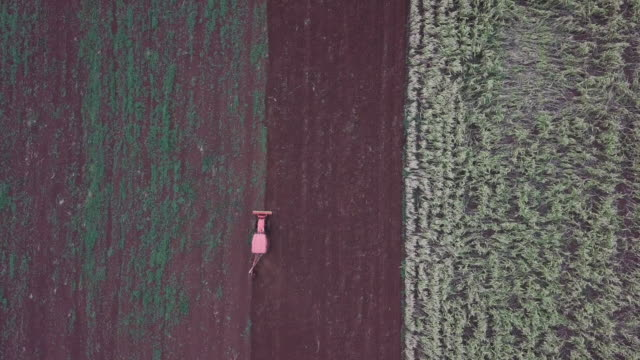 4k resolution Aerial view of Tractor plow agricultural field 4k resolution Aerial view of Tractor plow agricultural field harrow agricultural equipment stock videos & royalty-free footage