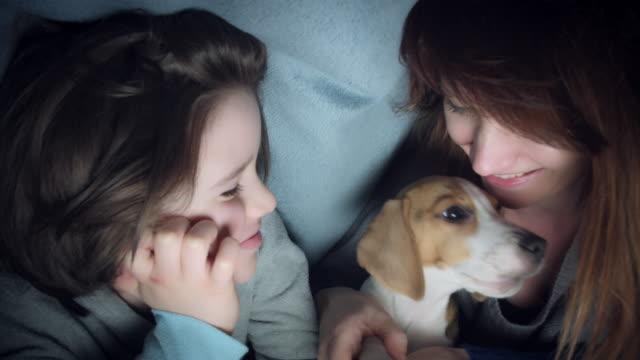 4k Shot of Child, Mom and Puppy Having Fun under Blanket video