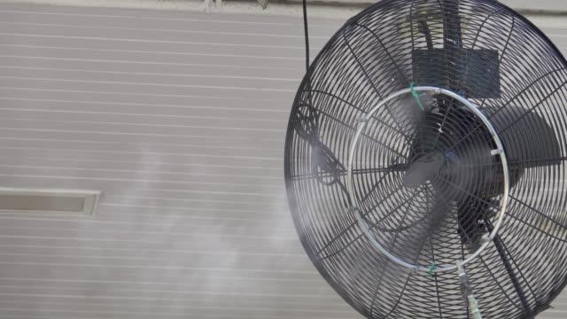 4k: steam fan video