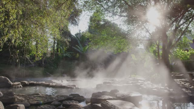 4k, Stream Hot spring water in forest