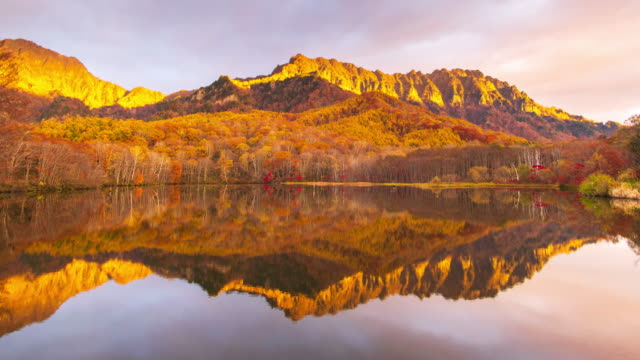 4k time lapse of kagamiike pond in autumn season, nagano, japan. - obficie ulistniony filmów i materiałów b-roll