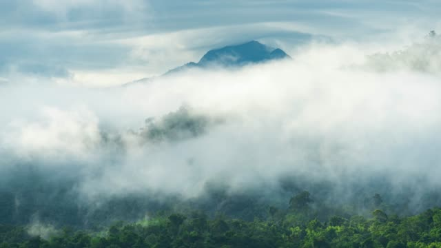 vídeos de stock e filmes b-roll de 4k time-lapse, view of mountains and tropical forest with clouds and steam. moving - sri lanka
