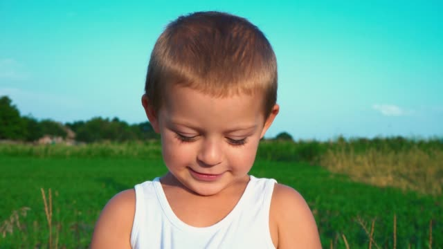 4-year-old boy in a white t-shirt shyly smiles into the camera, then looks away. Portrait of a cute child with small dimples on his cheeks on a nature background 4-year-old boy in a white t-shirt shyly smiles into the camera, then looks away. Portrait of a cute child with small dimples on his cheeks on a nature background. Happy childhood. only boys stock videos & royalty-free footage