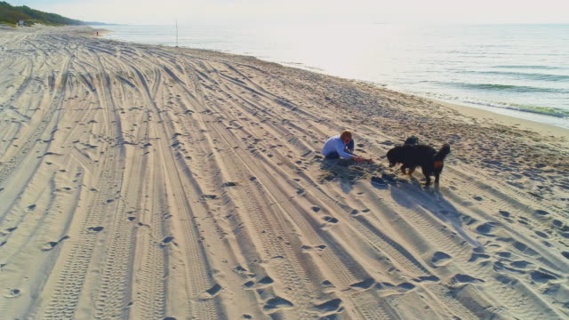 55-years-old mature active, attractive woman sitting on a sand beach of the Baltic Sea in the sunny autumn day, with her Zennenhund dog playing around. Aerial high-angle 4K UHD video footage.