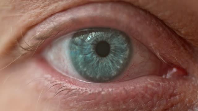 ecu niebieski oko otwarcie - wzrok filmów i materiałów b-roll